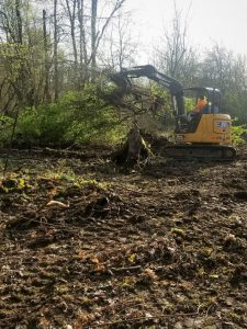 Brush clearing in Woodland WA