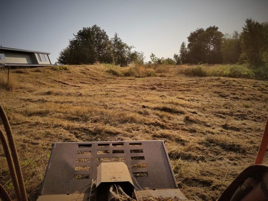 Land clearing in Camas Washington