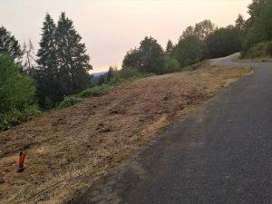 Land clearing in Woodland Washington
