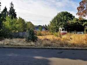Brush clearing in Portland Oregon
