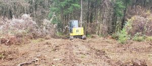 Track Works land clearing in Vancouver Washington